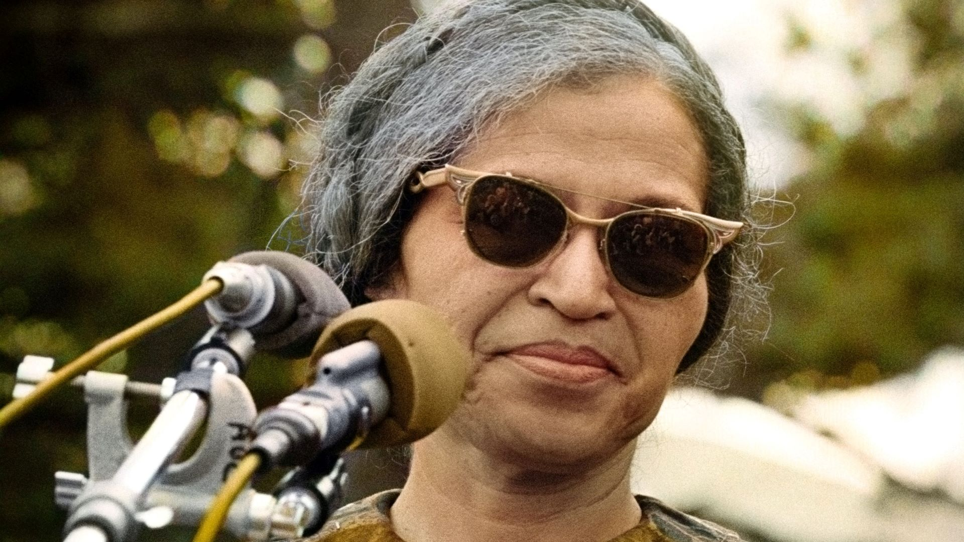 Rosa Parks in front of microphones